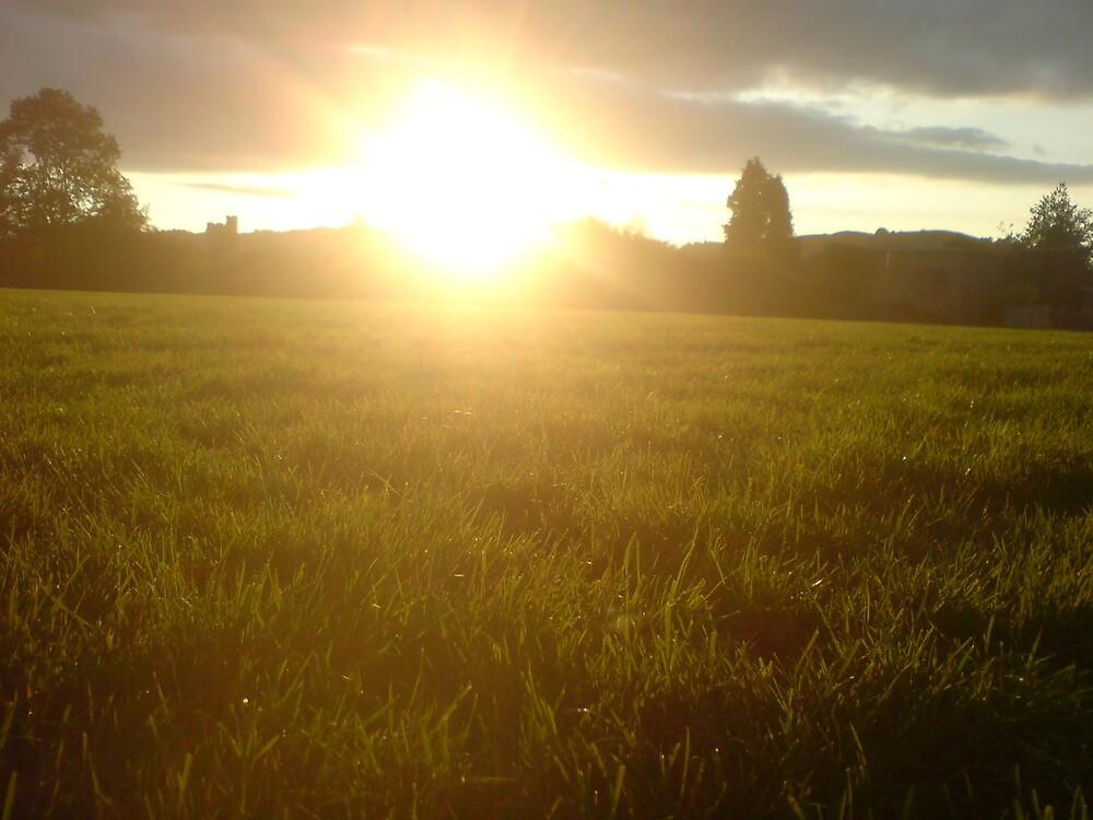 Sunshine Pitch by Nick Goolding