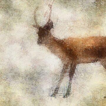 Deer 2 by AJ-artography