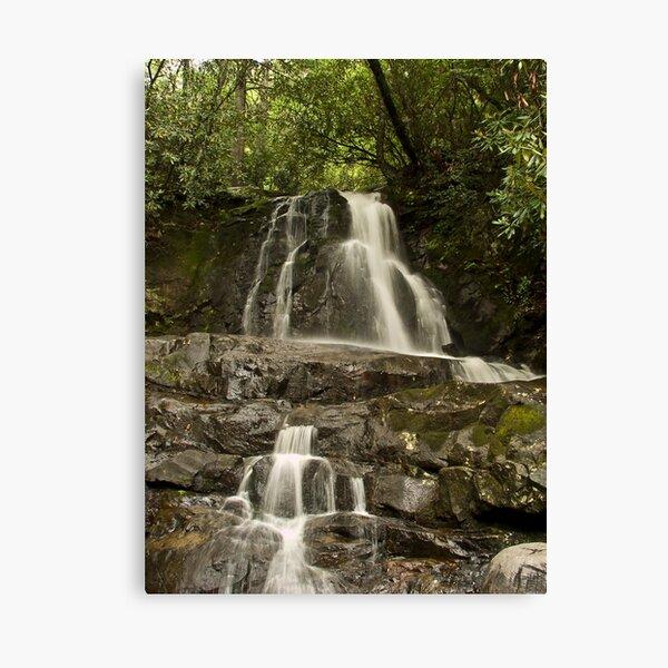 Laurel Falls  Canvas Print