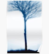 The Tree in Fog............. Poster