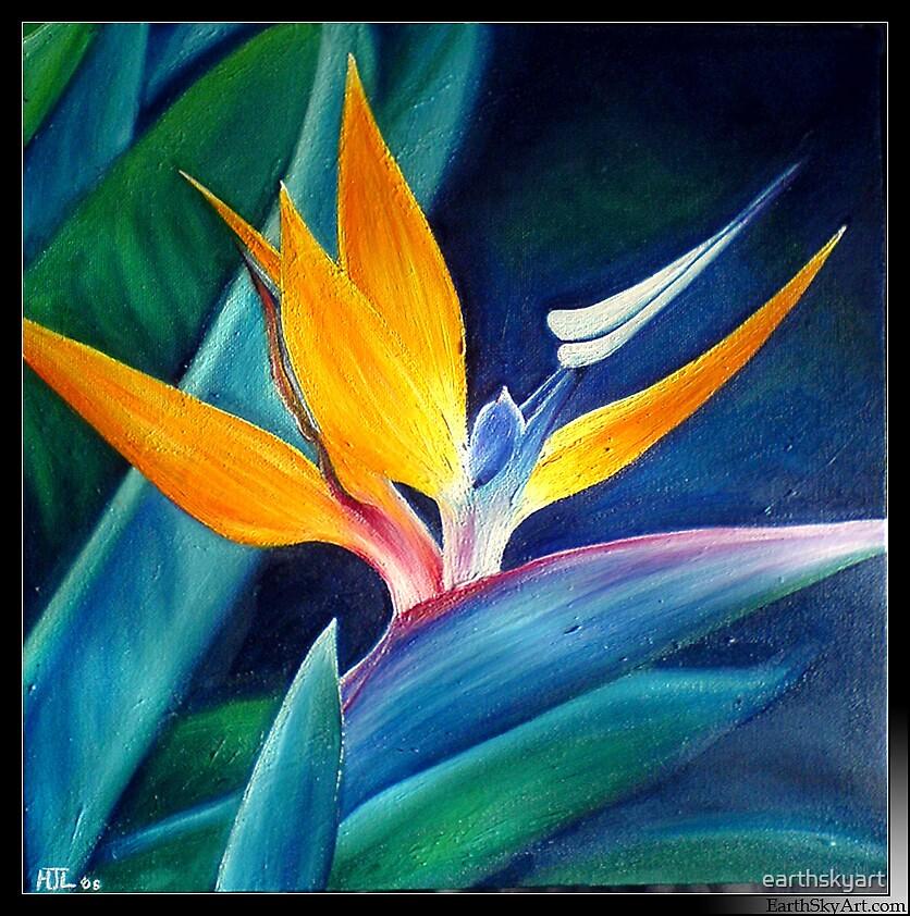 Sunbird by earthskyart