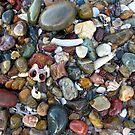 Ocean Treasure by Kitsmumma
