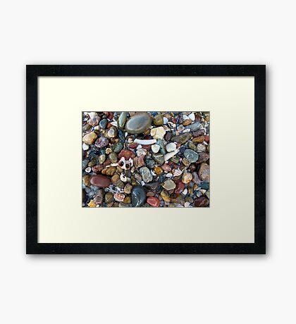 Ocean Treasure Framed Print
