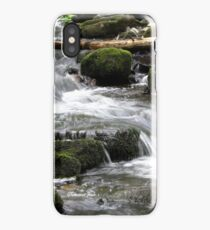 Letting Mother Nature Have Her Way iPhone Case/Skin