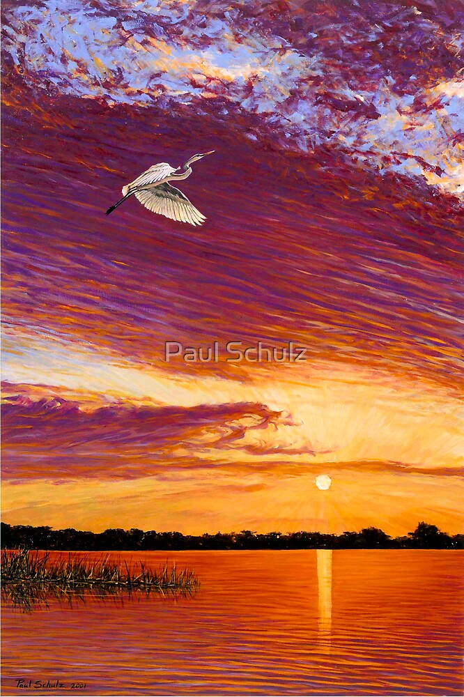 Central Florida Sunset by Paul Schulz