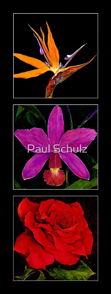 Flower Triple by Paul Schulz