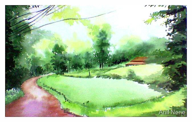 Rains in west by Anil Nene