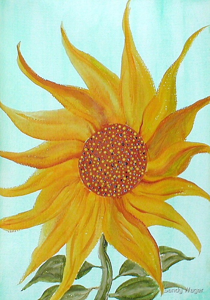 Sunflower 1 by Sandy Wager