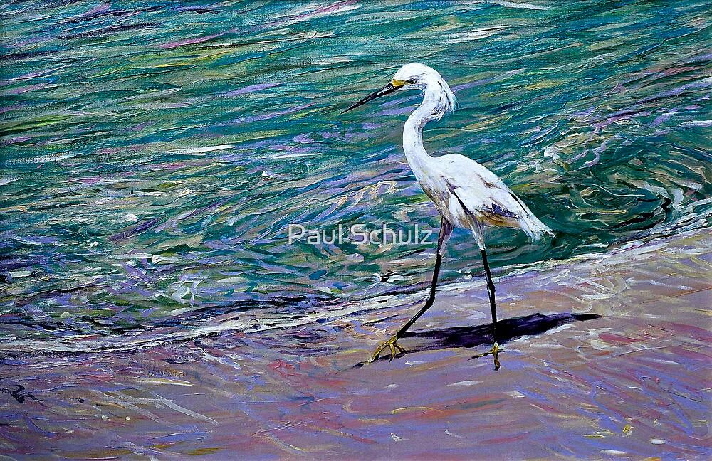 Snowy Egret on Beach by Paul Schulz