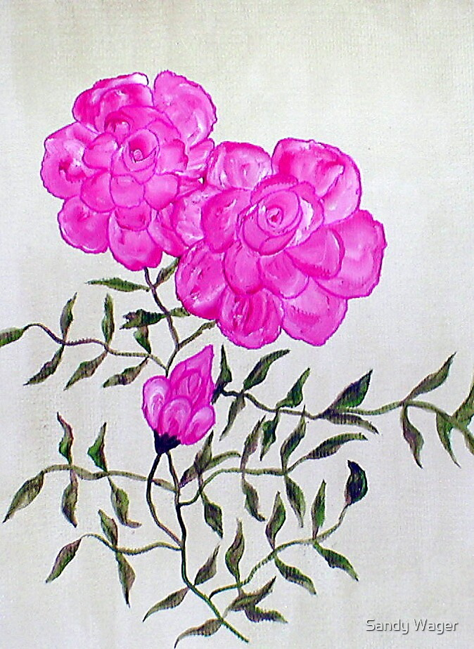 Dog Roses 1    by Sandy Wager