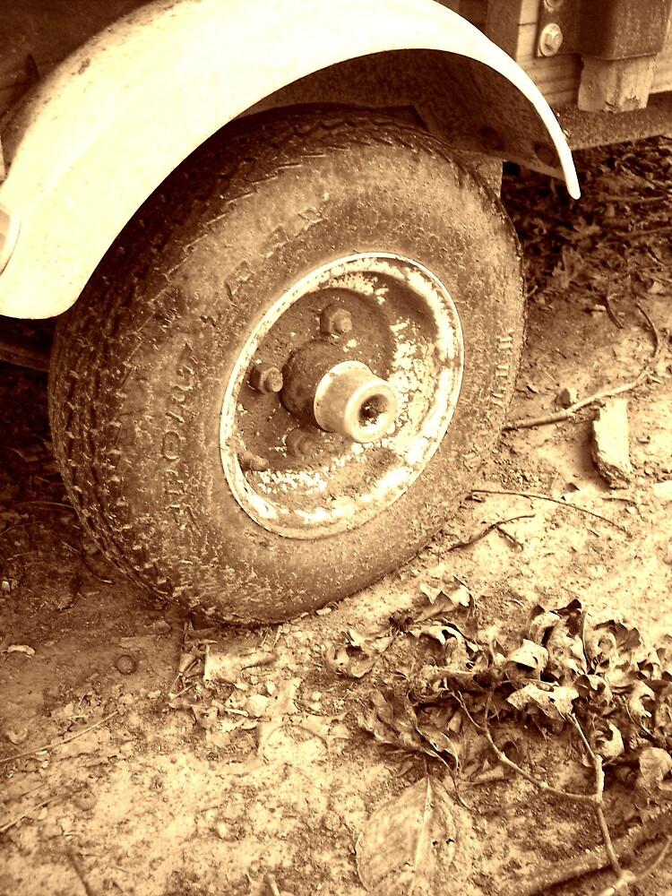 rustic rim by dannielle