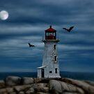Moonlight & Bats by AnnDixon