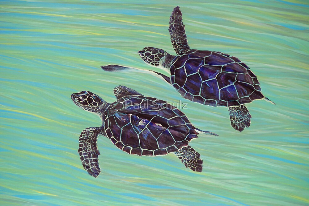 Sea Turtles by Paul Schulz