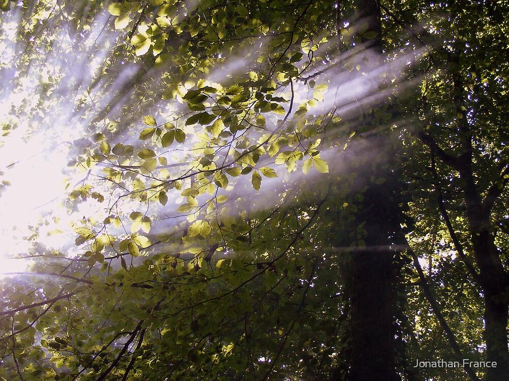 shining through by Jonathan France