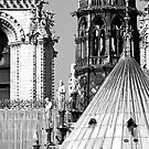 Notre Dame Roofscape by Alex Cassels