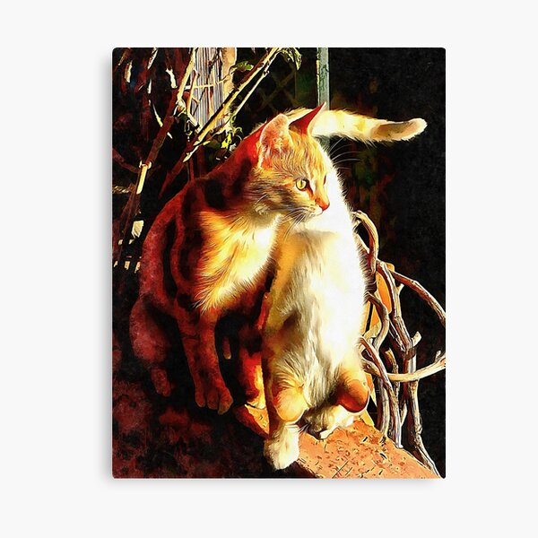 Sunlight Bathing Canvas Print