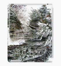frozen needles iPad Case/Skin