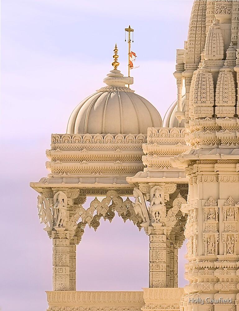 The Swaminarayan Mandir - Close-up by Holly Cawfield
