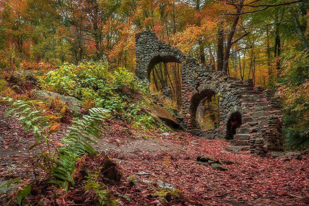 Mdm Sherri's Castle ruins, Vermont by mattmacpherson