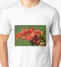 """Raging Wildfire"" Daylily Unisex T-Shirt"