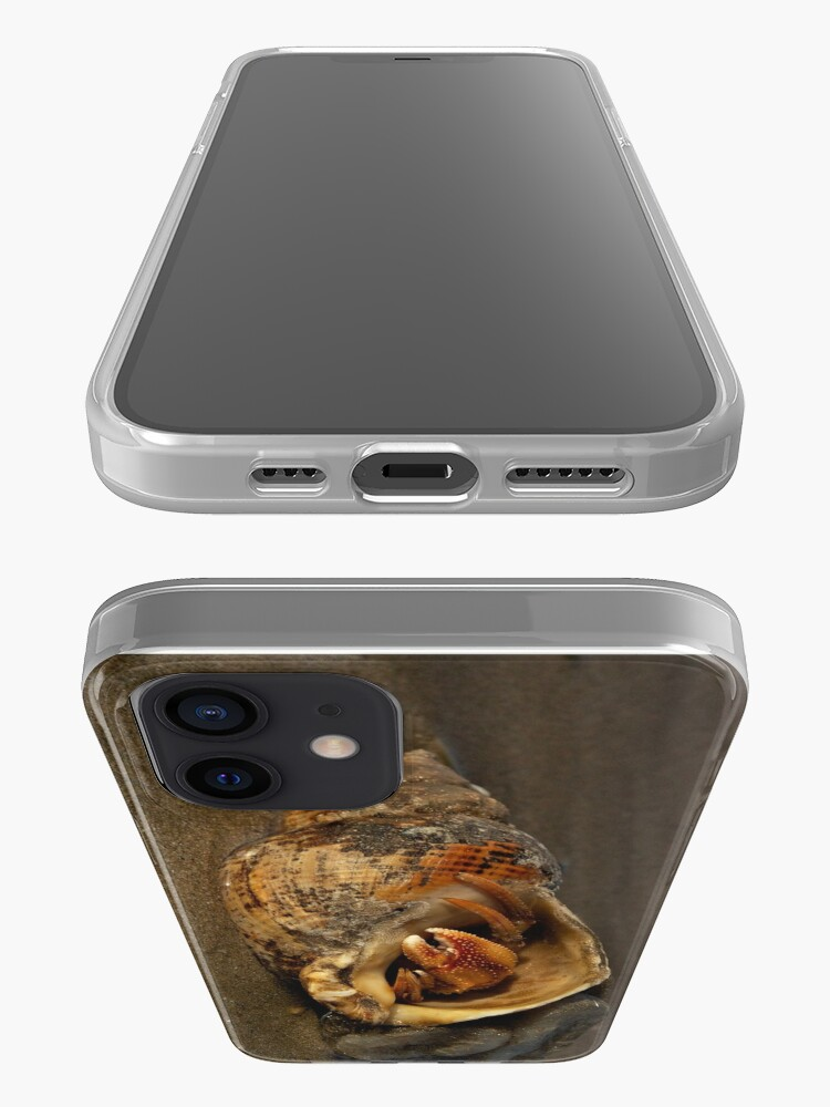 Alternate view of Hermit Crab on Fahan Beach iPhone Case & Cover