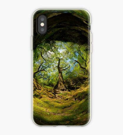 Ness Glen, Mystical Irish Wood iPhone Case