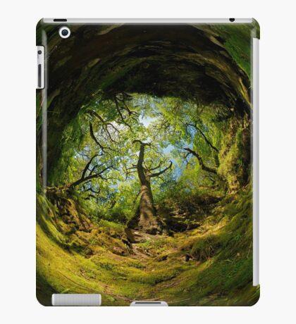 Ness Glen, Mystical Irish Wood iPad Case/Skin