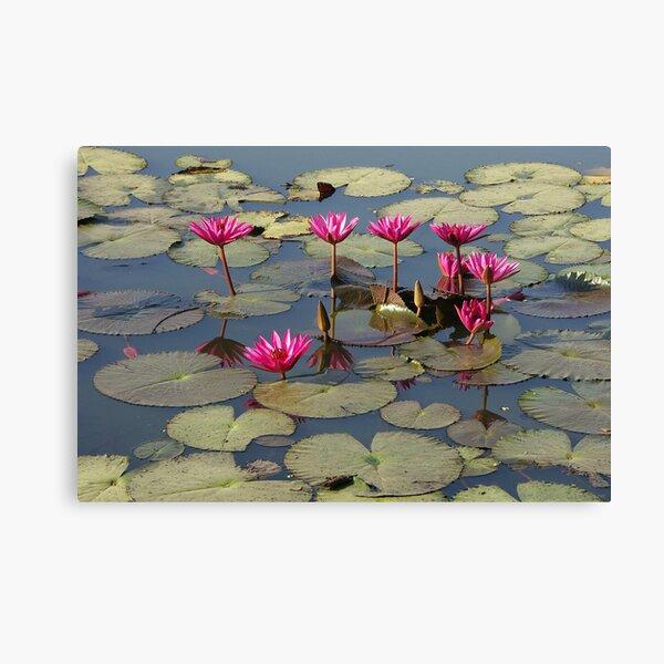 Pink Lotus Impression sur toile