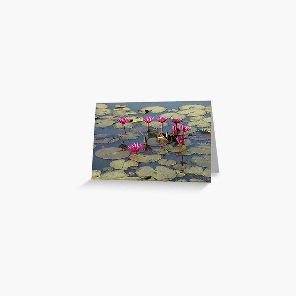 Pink Lotus Carte de vœux