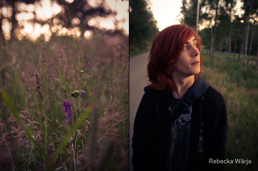 Sunset by Rebecka Wärja