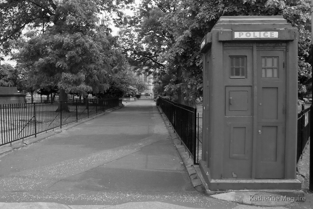 Police Box by Katherine Maguire