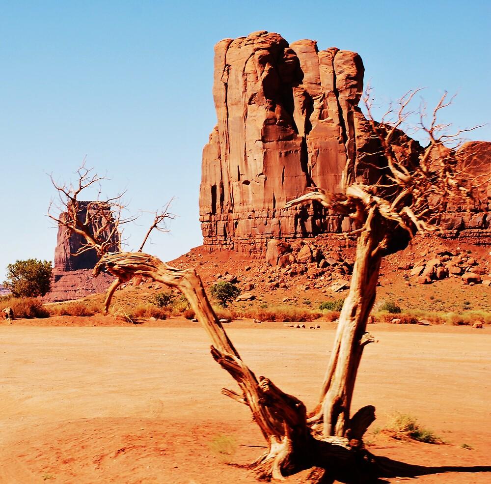 DEAD TREE. by Jenson Yazzie