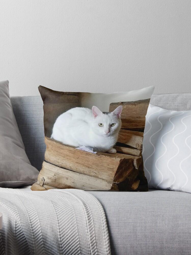 Jodi Cat by hoogafanter