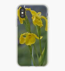 Yellow Flag Iris - Donegal iPhone Case