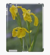 Yellow Flag Iris - Donegal iPad Case/Skin
