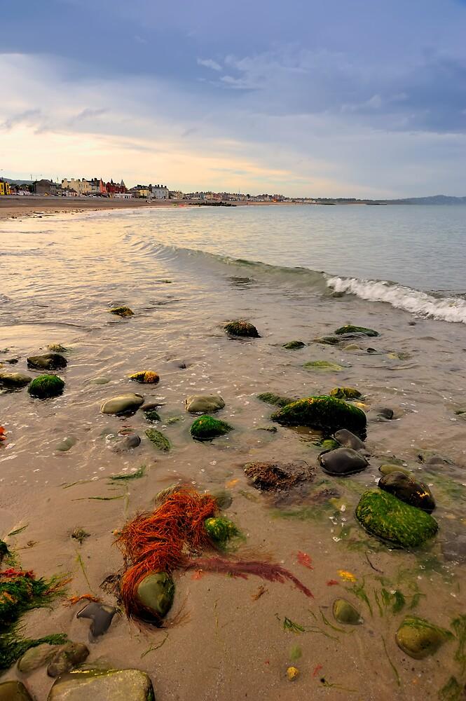 Wicklow Coastline by Michael Walsh