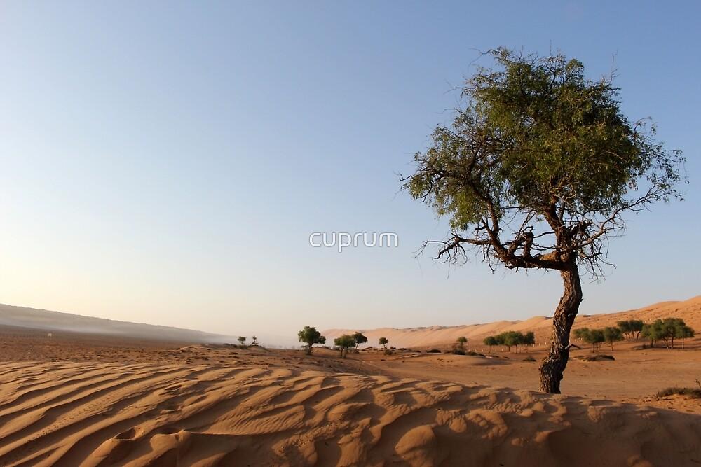 Desert mist by cuprum