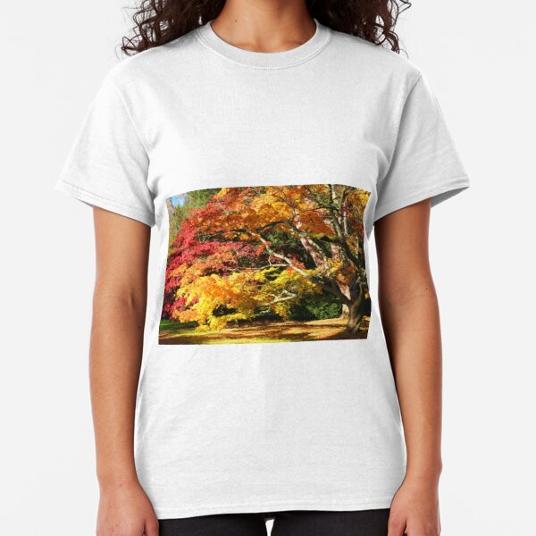 Autumn Acer Glade Classic T-Shirt