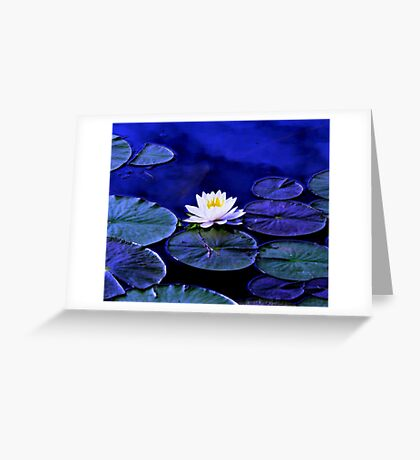 Midnight Blues Greeting Card