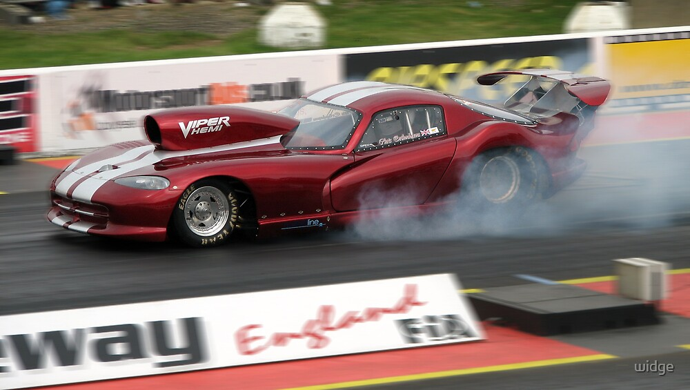 Smoking viper by widge