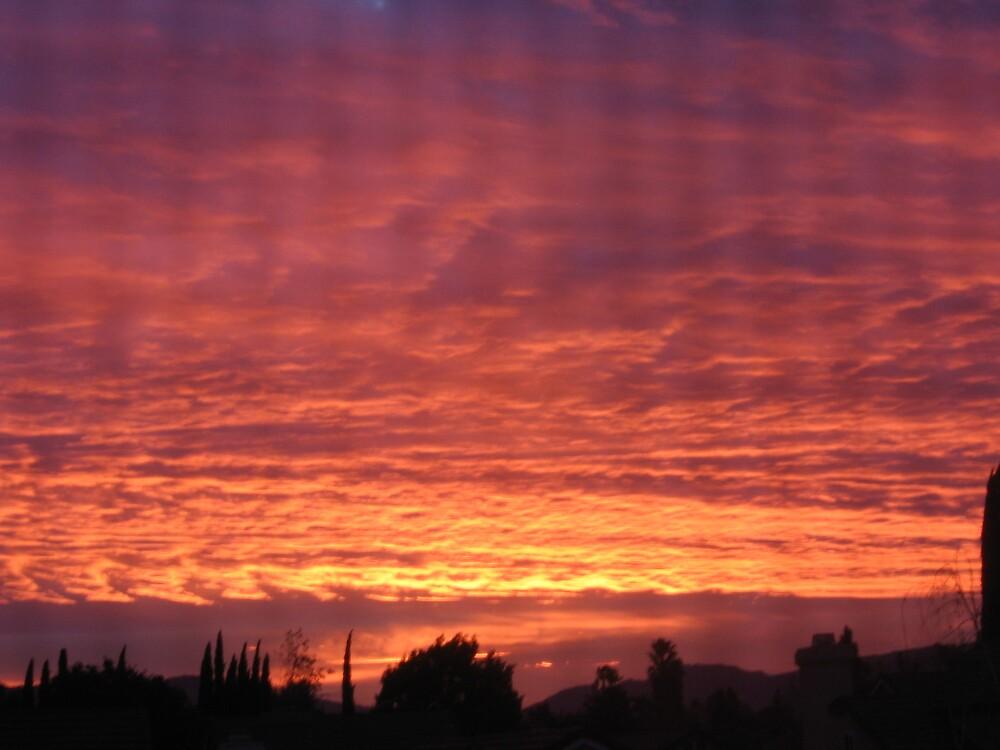 Morning Sunrise by mamachip