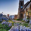 St Giles Wisteria by Ruski