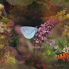 Butterfly Watcher --  Collaboration with Enchanted Dreams! by dougie1
