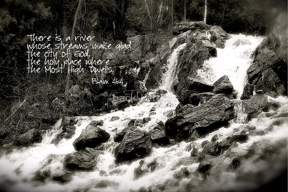 Waterfall in Black & White by back40fotos