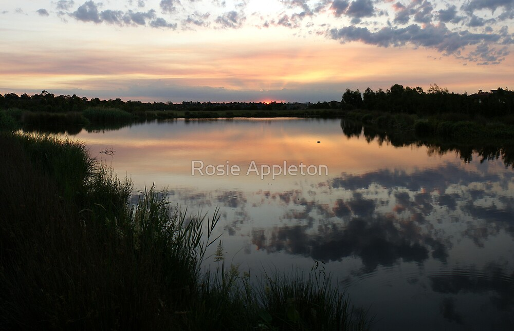 Frog Hollow Sunset by Rosie Appleton
