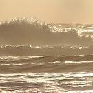 Wave by Samantha Higgs