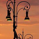 Last Light by Samantha Higgs