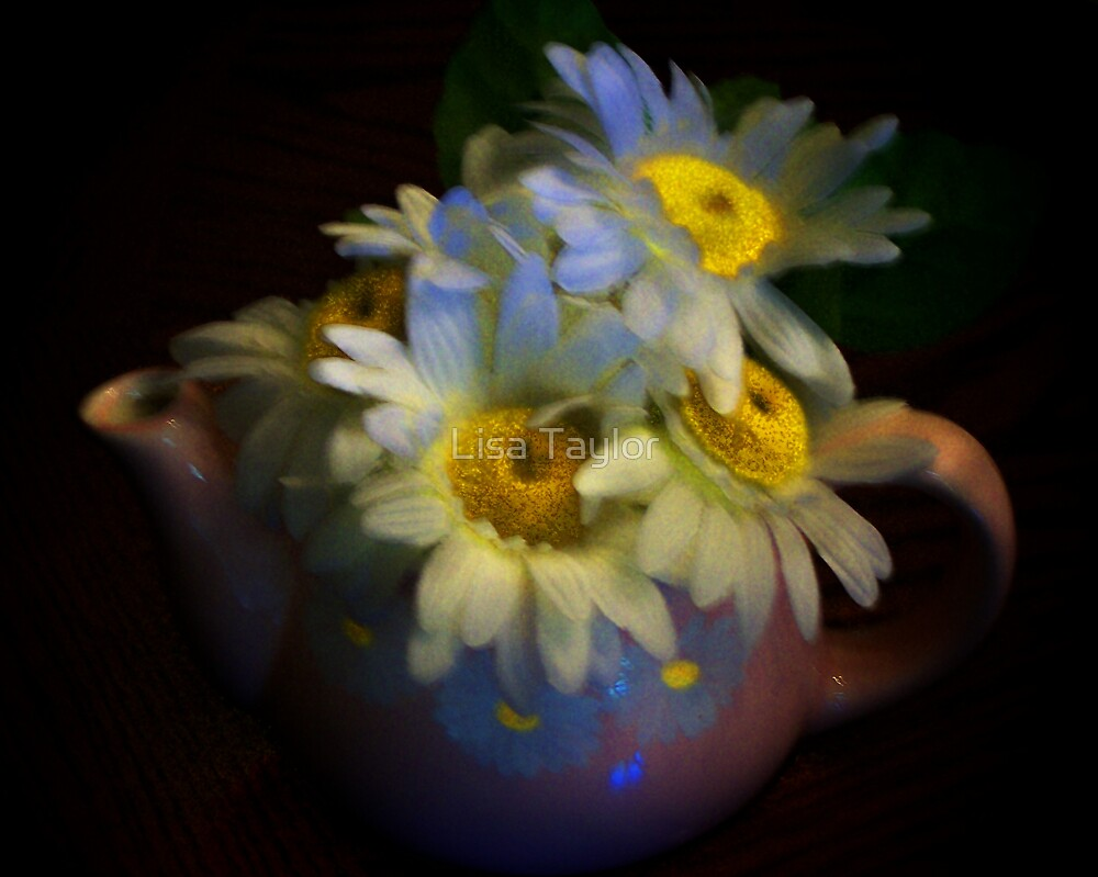 Daisy in a Teapot by Lisa Taylor