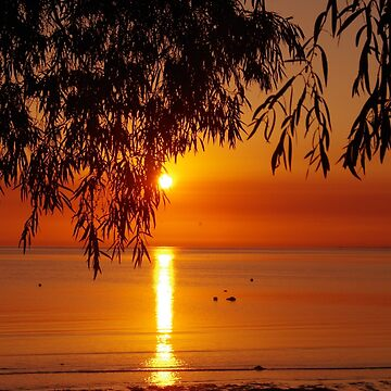 Dunsborough Daybreak by lezvee