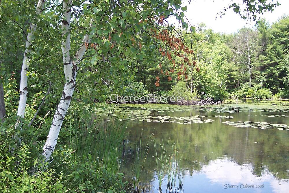 White Birch By The Lake by ChereeCheree